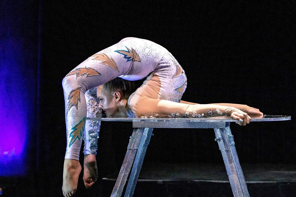 Atmospheric Acrobatic/Contortion Artists - Sacred Circus