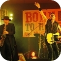 The Australian Springsteen Show-3