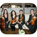 Gloriette String Quartet