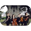 Gloriette String Quartet-3