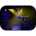Majestic - Acrobats - Aerial Artists