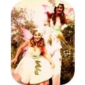 Gumnut Fairies-2