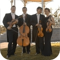 Vivente Strings